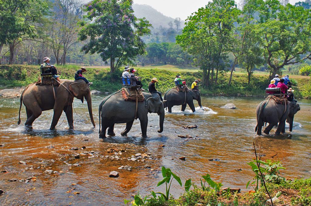 Nature-Tours-in-Phuket