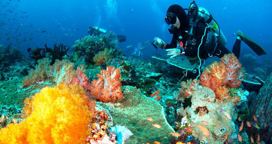 phuket-scuba-diving
