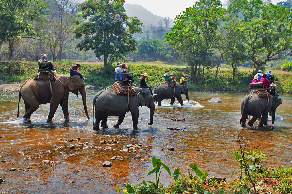 Nature-Tours-in-Phuket